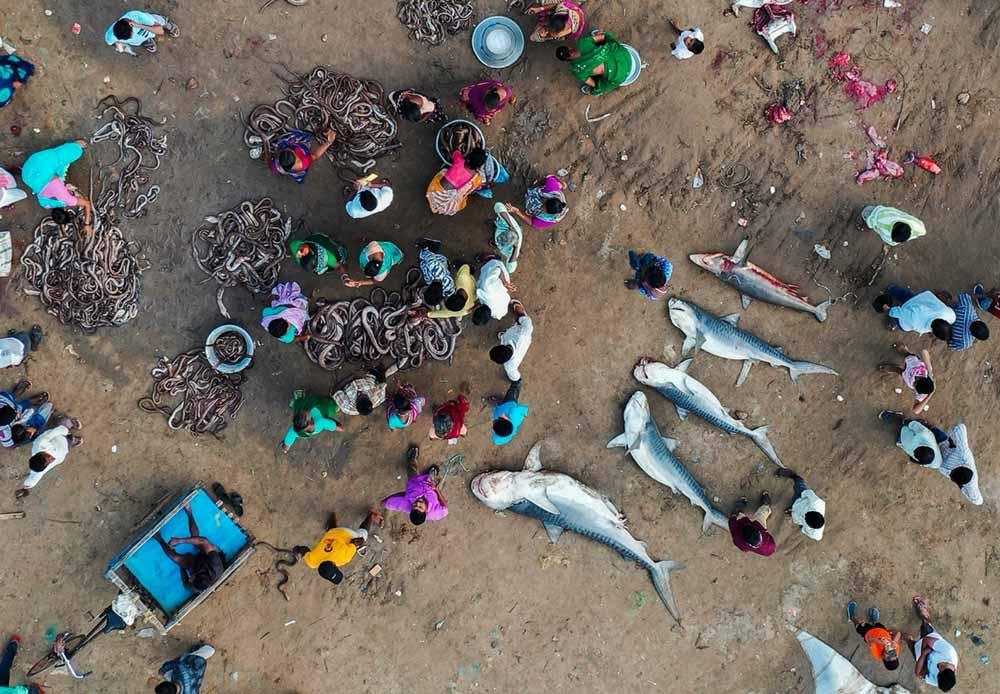 drone-photo-awards-2020-categoria-serie-srikanth-mannepuri