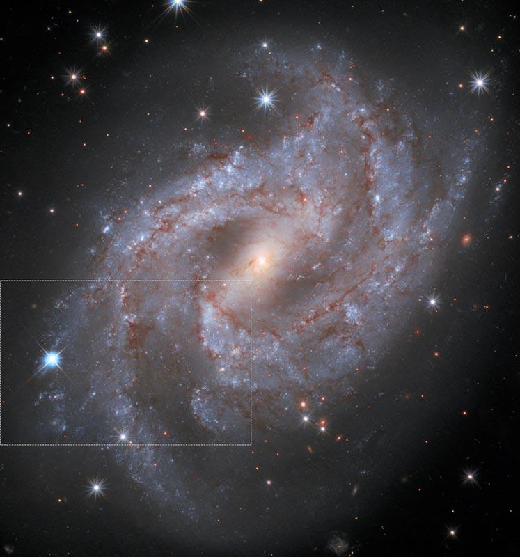 hubble-supernova-timelapse