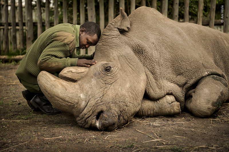 ami-vitale-wildlife-photographer-of-the-year/