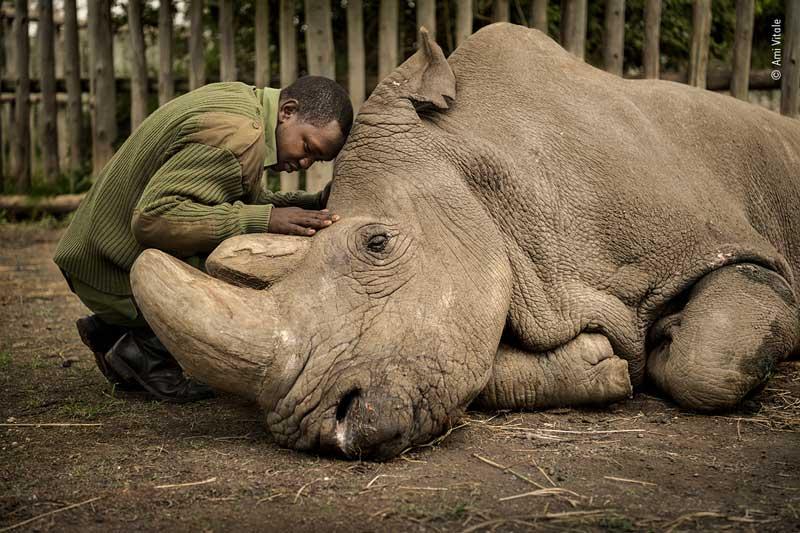 ami-vitale-wildlife-photographer-of-the-year-people-choice