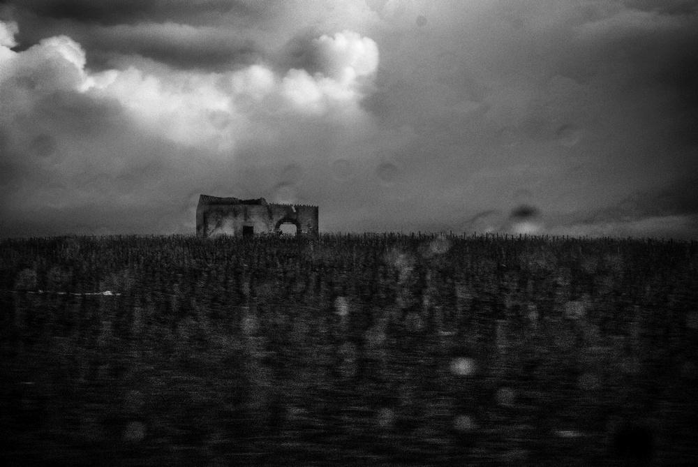 patrizia-galia-intervista-bianconero-sicilia-paesaggio-sotto-la-pioggia-da-auto