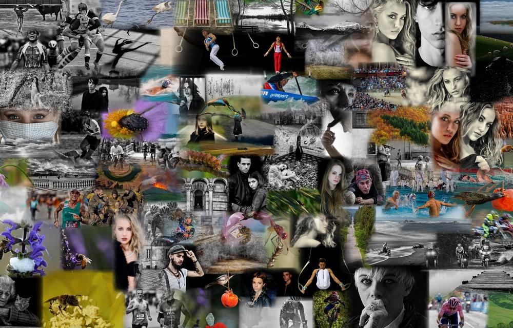 Gruppo Fotografico con il maggior numero di Partecipanti - 3C CINEFOTOCLUB CASCINA SILVIO BARSOTTI EFI CAFIAP ) (11 partecipanti) MENZIONE SPECIALE APROMASTORE